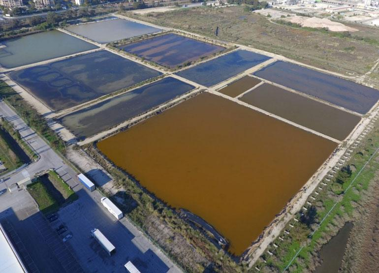 Portugal Houses Europe's Largest Microalgae Production Platform